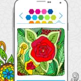 Kolorowanki kwiatów